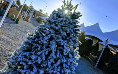 Where to Get Your Christmas Tree Flocked in Las Vegas and What to Expect